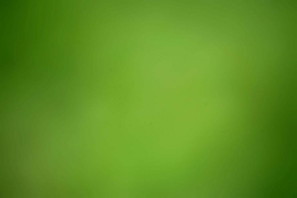 Imagen de background verde